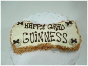 Guinness4